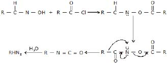 CBSE, Class 12, IIT JEE, Syllabus, Preparation, AIPMT, NCERT, Important, Amines, Compounds containing Nitrogen